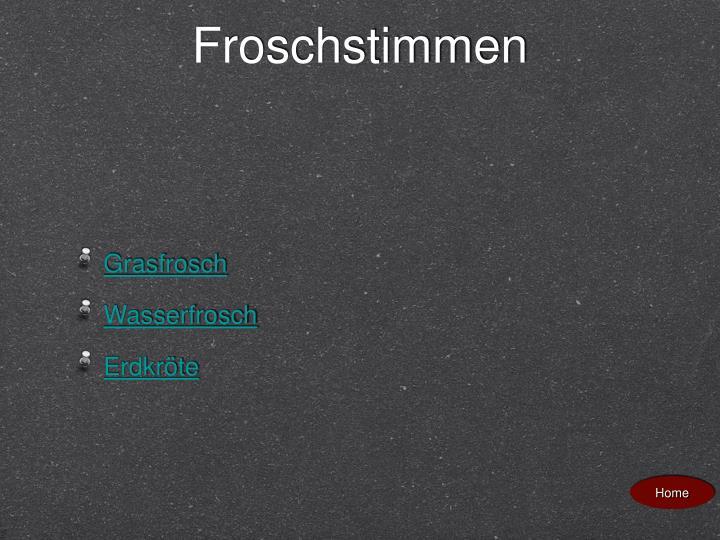 Froschstimmen
