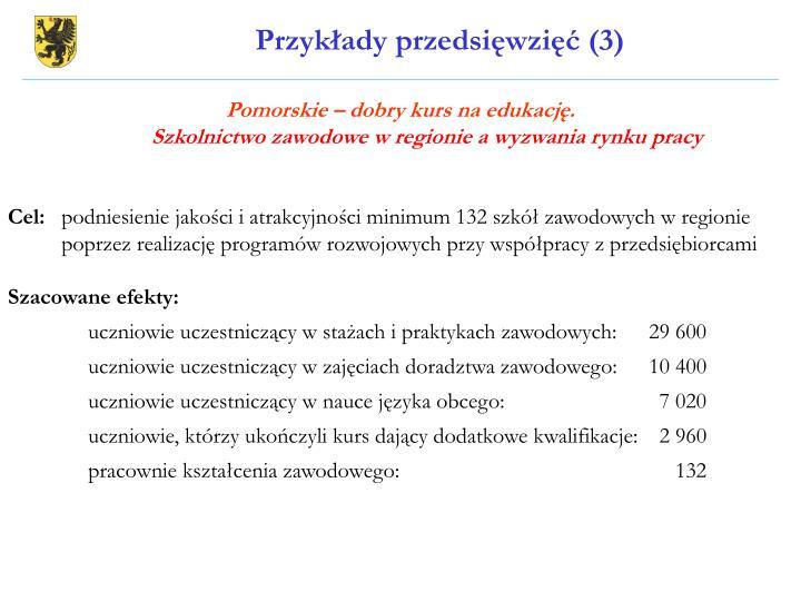 Przykłady przedsięwzięć (3)
