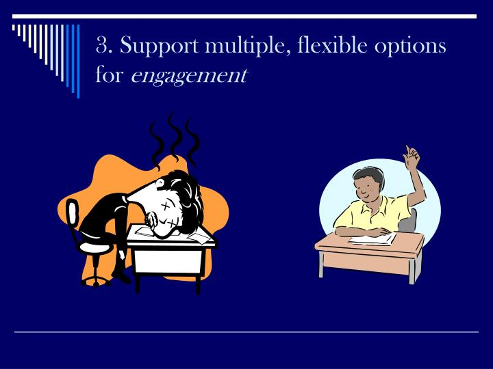 3. Support multiple, flexible options for