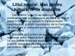 litiul natural leac pentru tulburarile de dispozitie