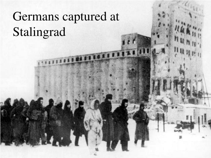 Germans captured at Stalingrad