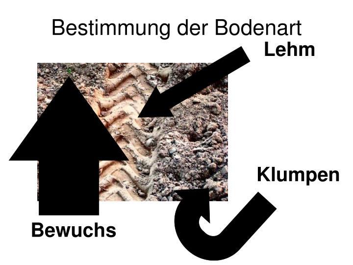 Bestimmung der Bodenart