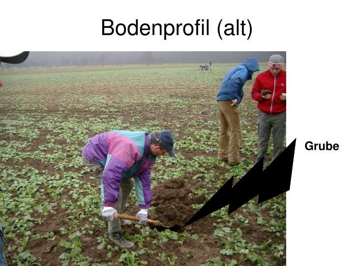 Bodenprofil (alt)