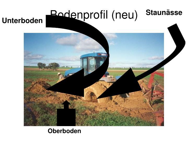 Bodenprofil (neu)