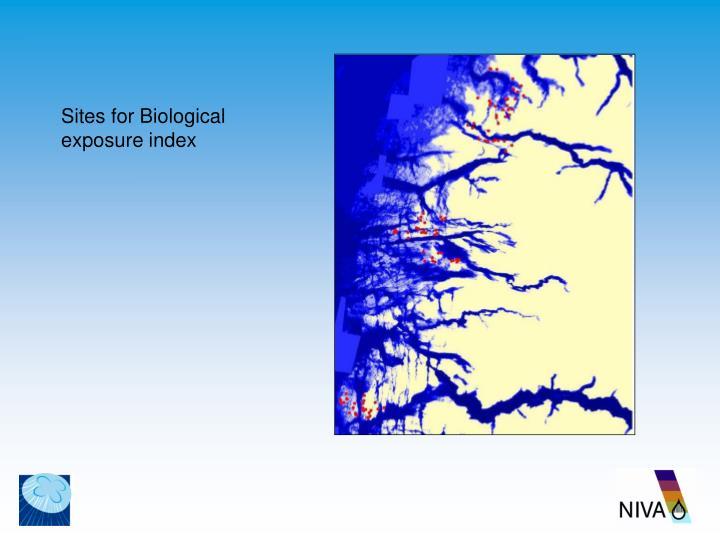 Sites for Biological exposure index