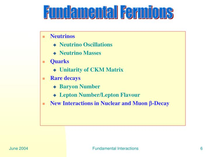Fundamental Fermions