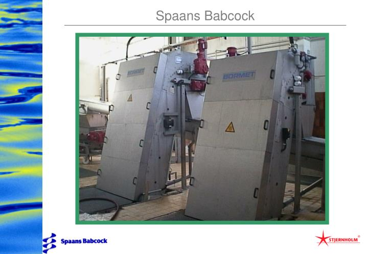 Spaans Babcock