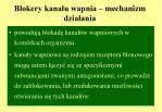 blokery kana u wapnia mechanizm dzia ania