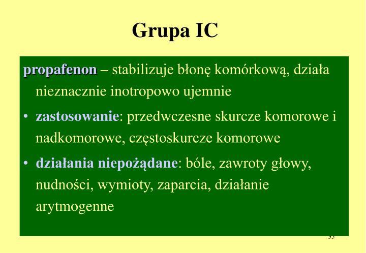 Grupa IC