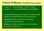 podzia williamsa 4 podstawowe grupy4