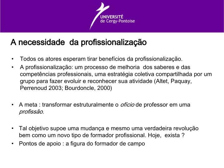 A necessidade  da profissionalização