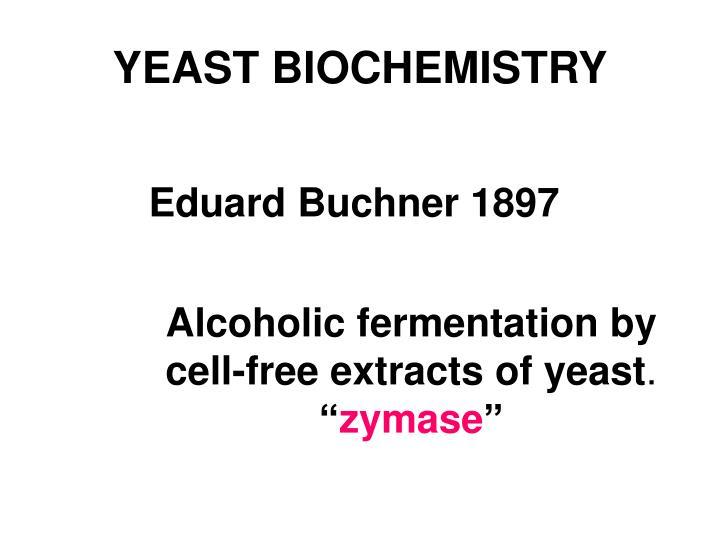 YEAST BIOCHEMISTRY
