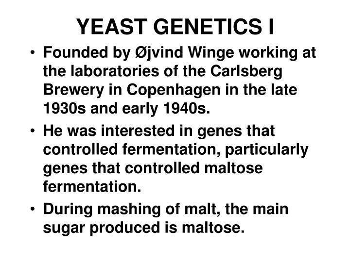YEAST GENETICS I