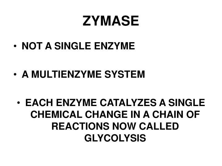 ZYMASE