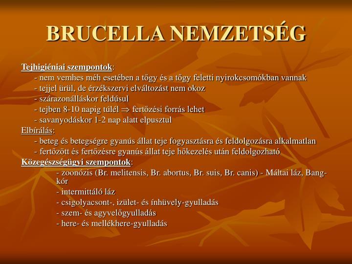 BRUCELLA NEMZETSÉG