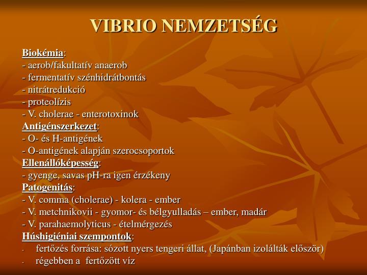 VIBRIO NEMZETSÉG