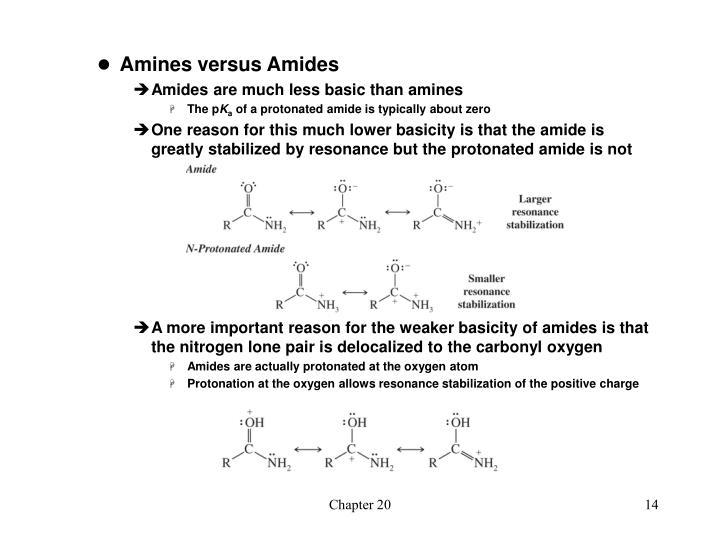 Amines versus Amides