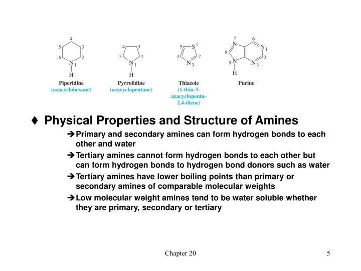 Physical Properties and Structure of Amines