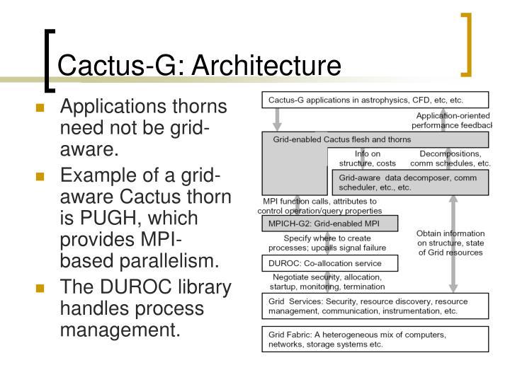 Cactus-G: Architecture