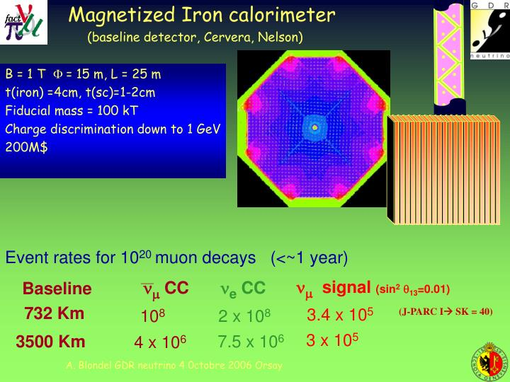 Magnetized Iron calorimeter