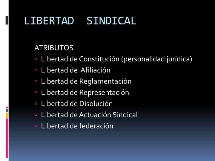 LIBERTAD  SINDICAL