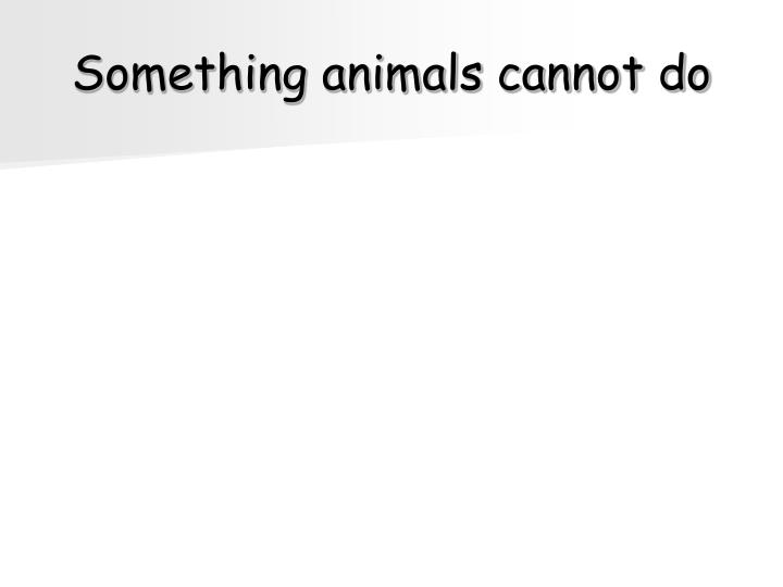Something animals cannot do