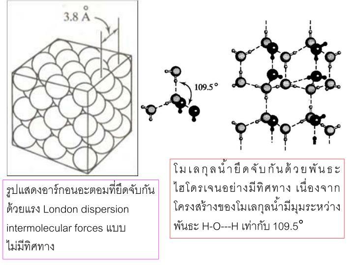 โมเลกุลน้ำยึดจับกันด้วยพันธะไฮโดรเจนอย่างมีทิศทาง เนื่องจากโครงสร้างของโมเลกุลน้ำมีมุมระหว่าง พันธะ