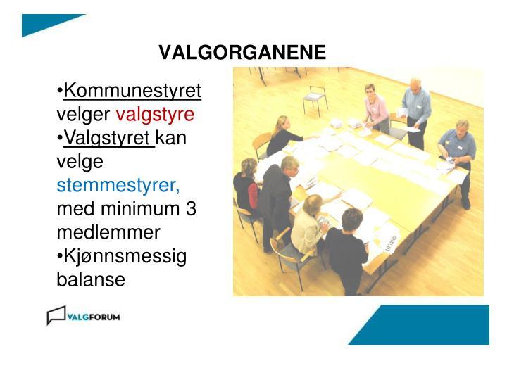 Kommunestyret