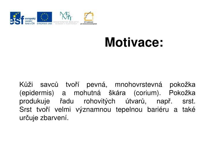 Motivace: