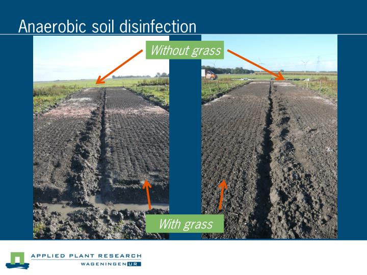 Anaerobic soil disinfection