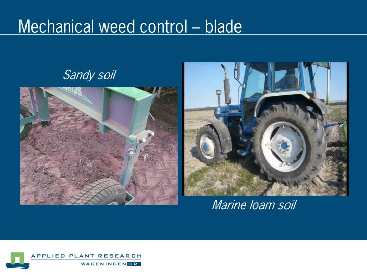 Mechanical weed control – blade