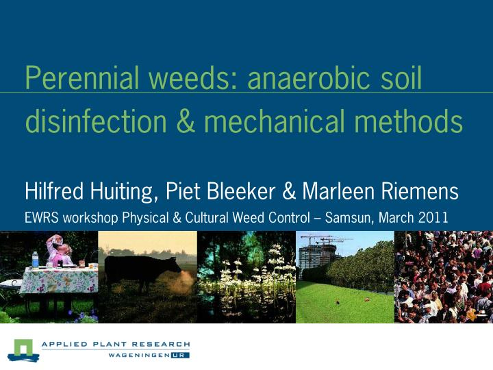Perennial weeds anaerobic soil disinfection mechanical methods