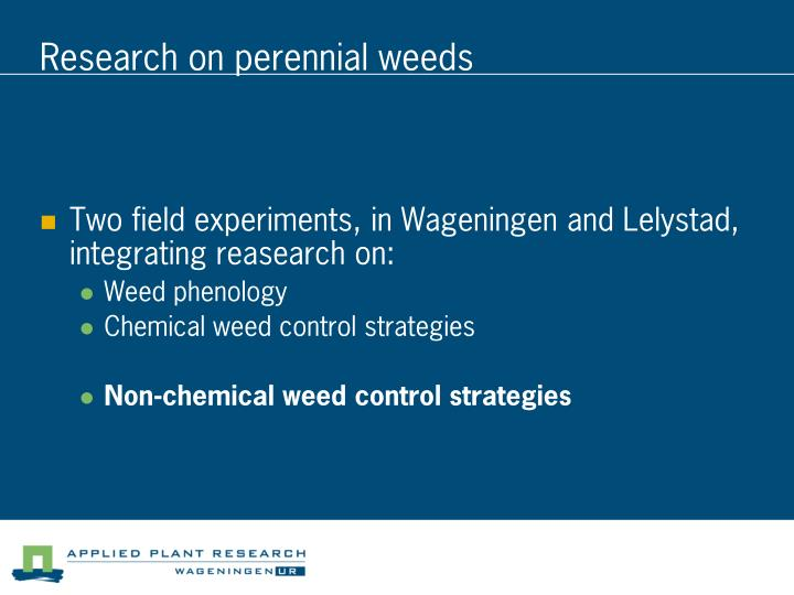 Research on perennial weeds