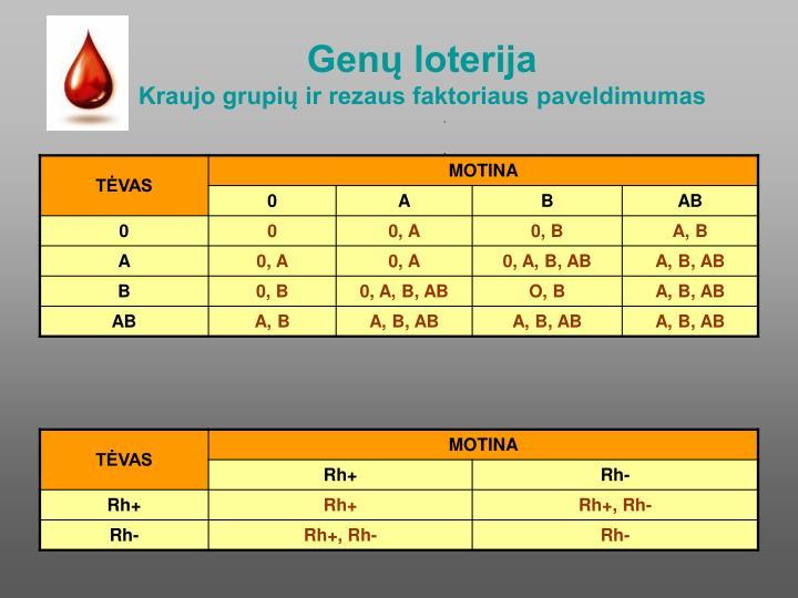 Genų loterija