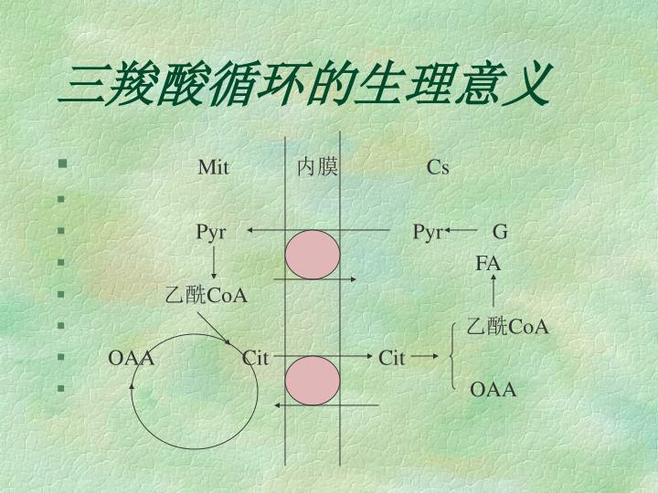 三羧酸循环的生理意义