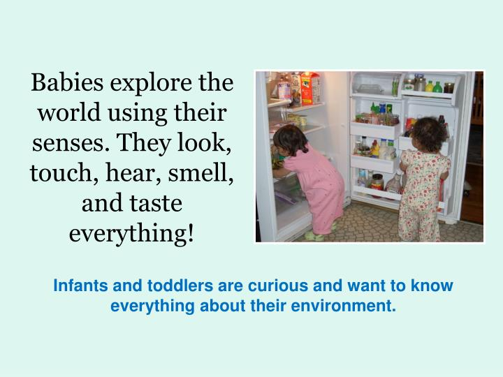 Babies explore the world using their senses. They look, touch, hear, smell, and taste everything!