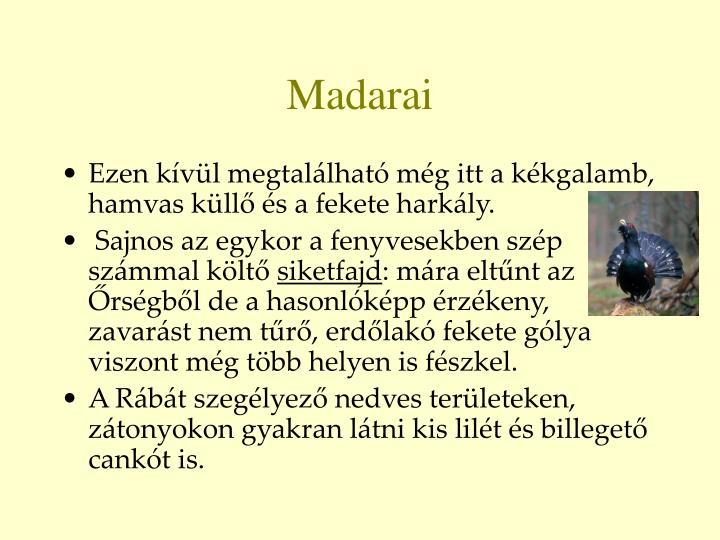 Madarai