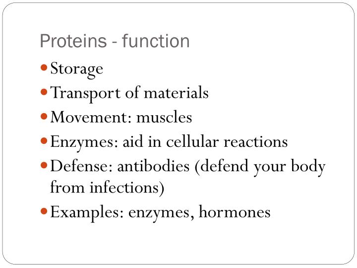 Proteins - function