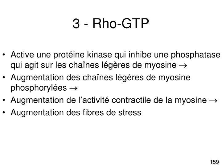3 - Rho-GTP