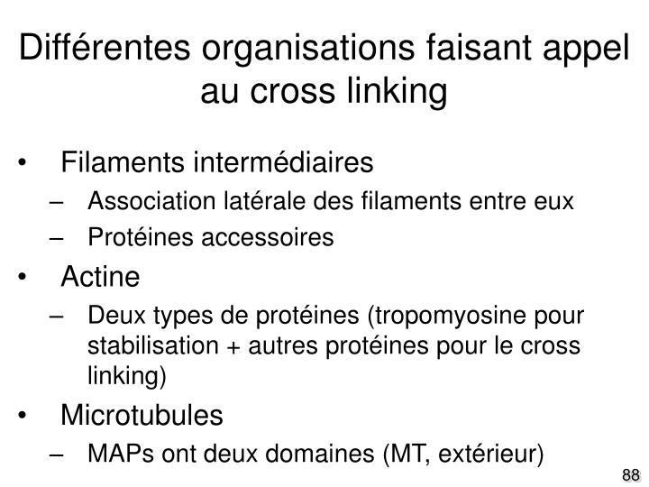 Différentes organisations faisant appel au cross linking