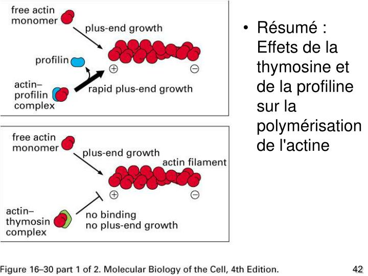 Fig16-30(1)