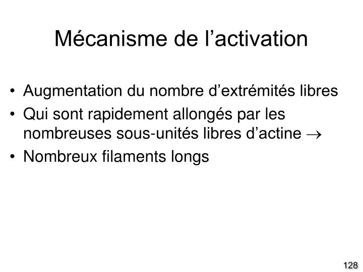 Mécanisme de l'activation