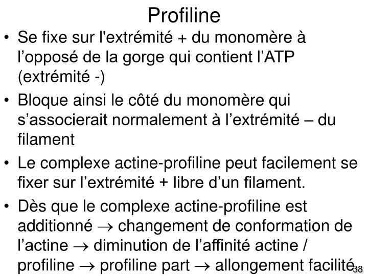 Profiline