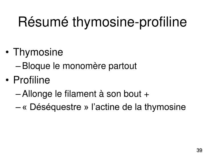 Résumé thymosine-profiline