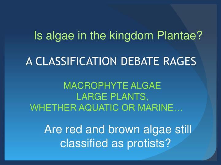 Is algae in the kingdom Plantae?
