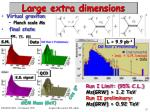 large extra dimensions1