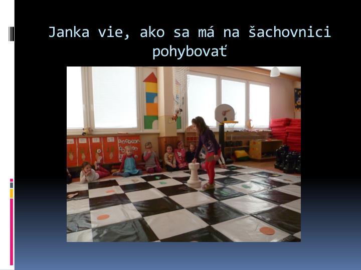 Janka vie, ako sa má na šachovnici pohybovať