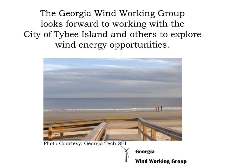 The Georgia Wind Working Group