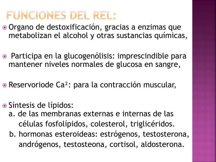 Funciones del REL: