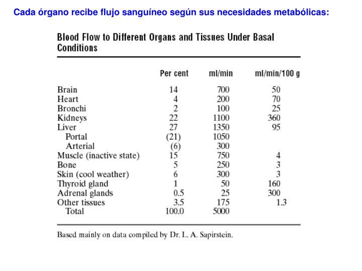 Cada órgano recibe flujo sanguíneo según sus necesidades metabólicas: